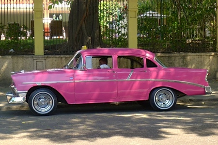 Pink taxicab parked alongside garden wall