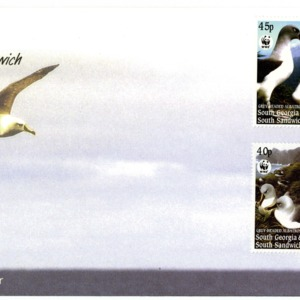 Gray-headed albatross
